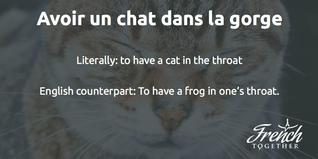 avoir un chat dans la gorge French idiom