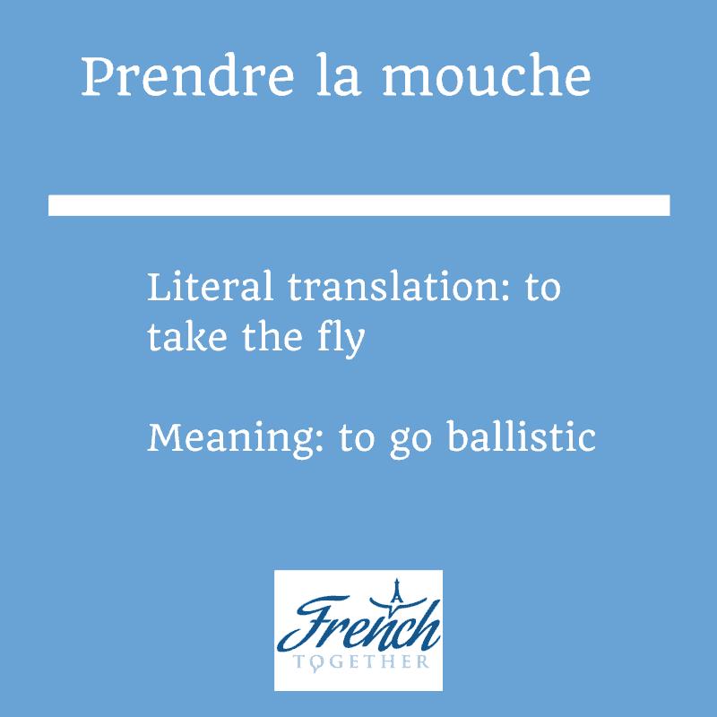 prendre la mouche French idiom