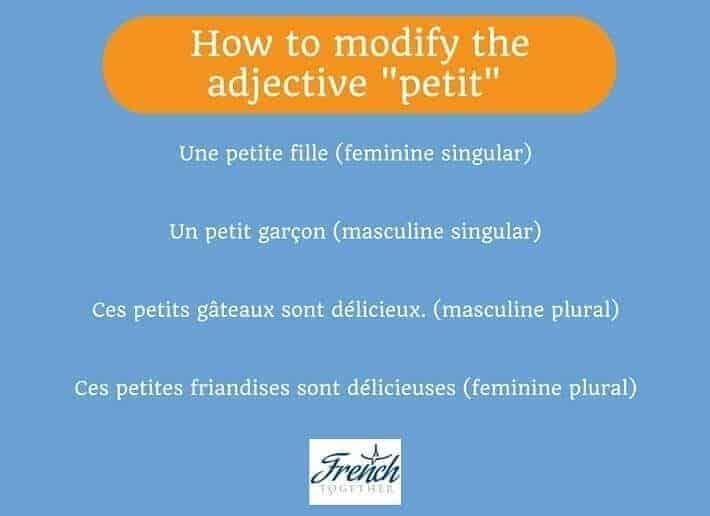 common French adjective petit