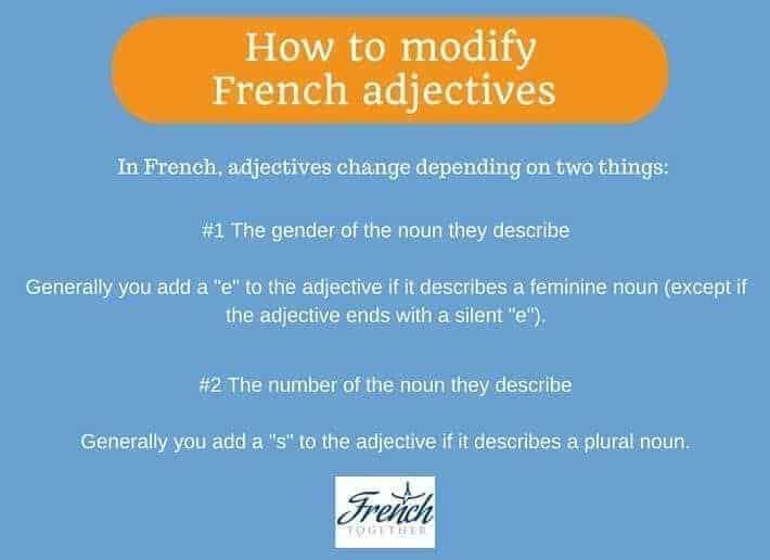 French adjectives gender number