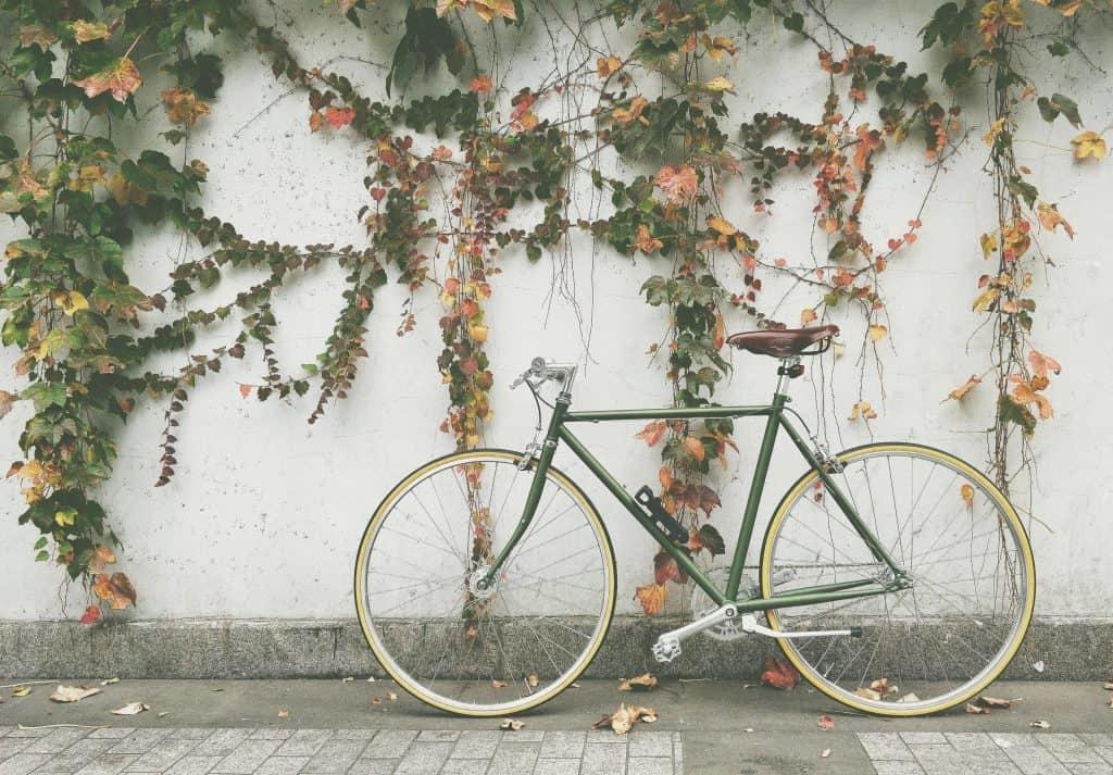Bike against wall with plants