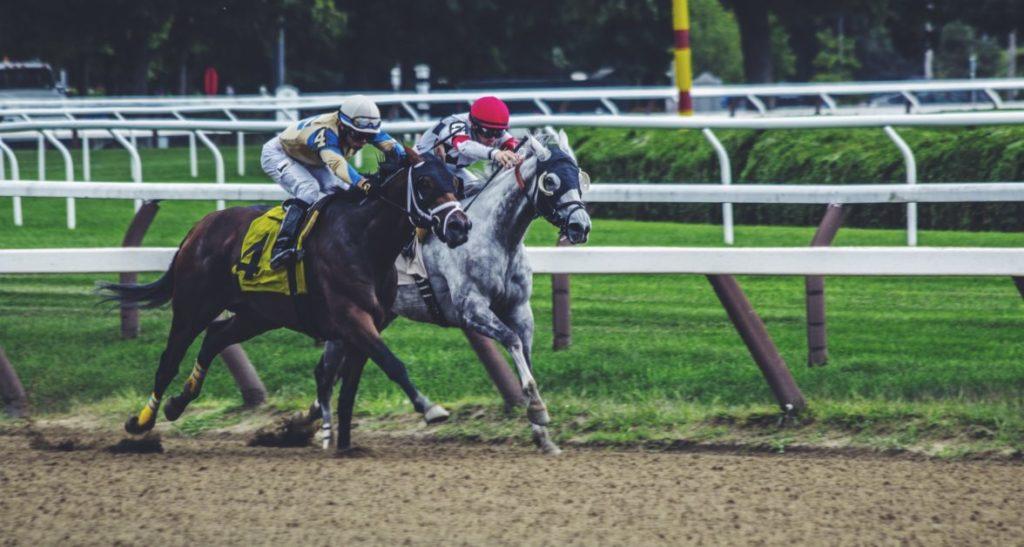 Two horses, ridden by jockeys, race.
