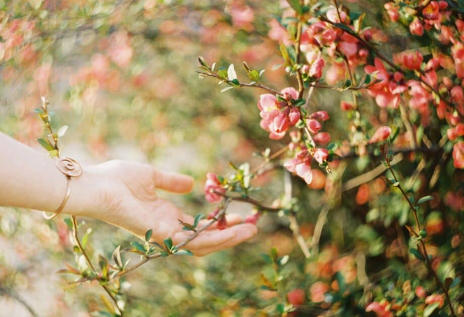 A woman's hand with a metal bracelet decorated with a spiral shape holds out her hand to gently touch the pink blossoms of a plant that are all around her. They seem to sworl into the background.