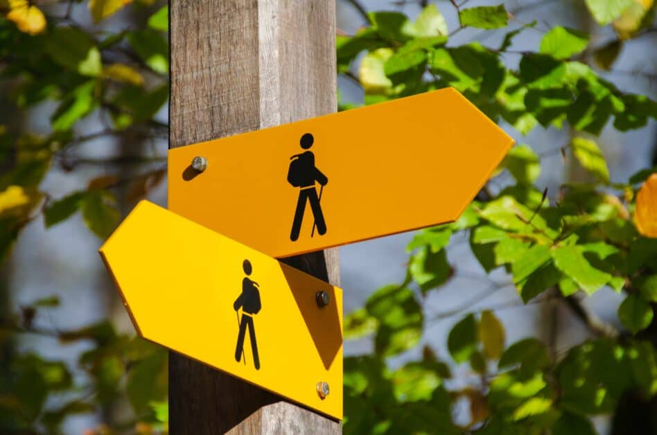 A direction sign for hiking paths shows outlines of hikers on bright yellow arrow signs going in different directions. In the background are tree leaves.